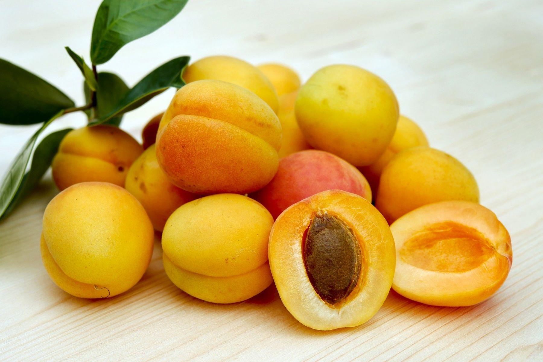apricots-2523272_1920