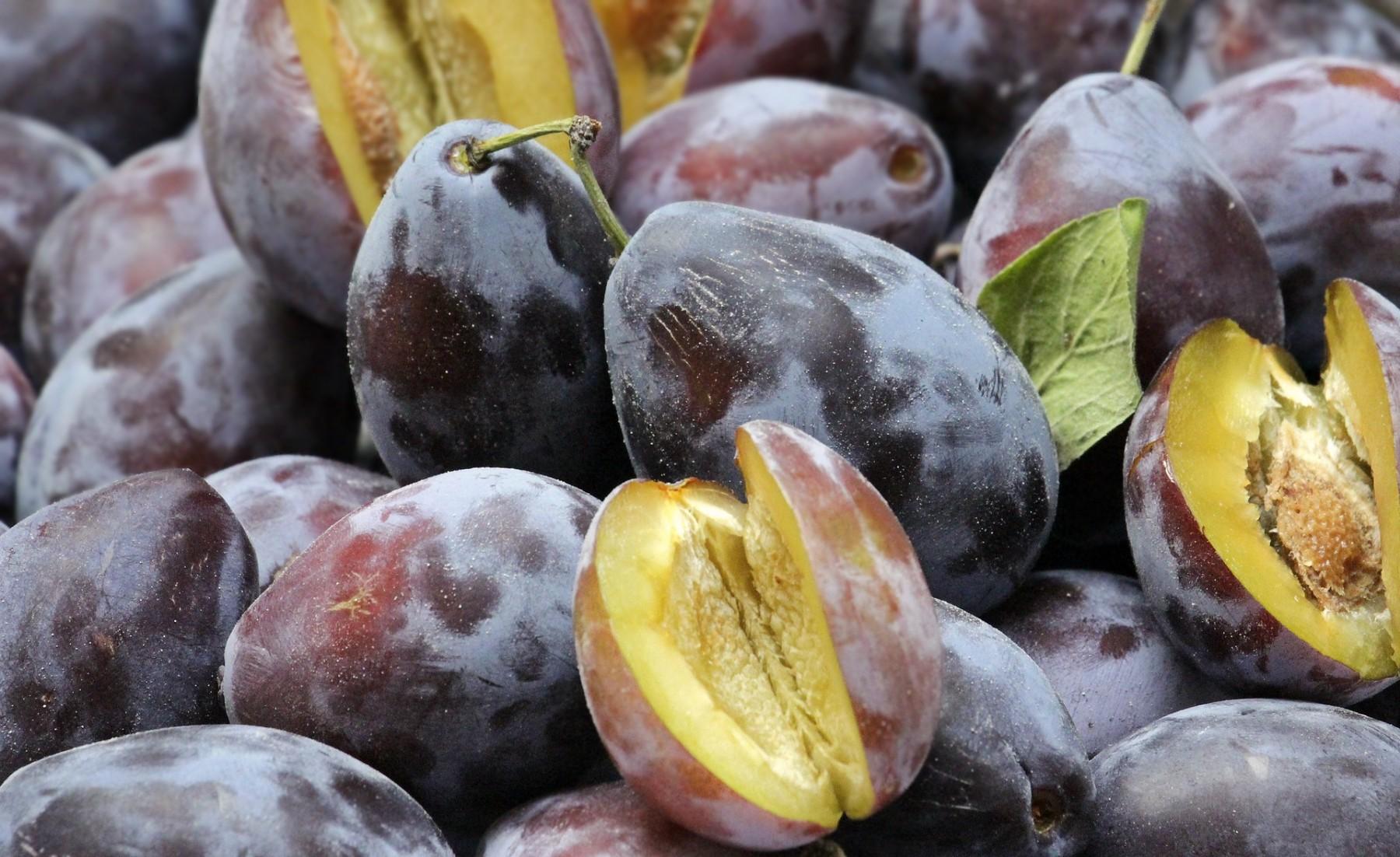 plums-3641830_1920