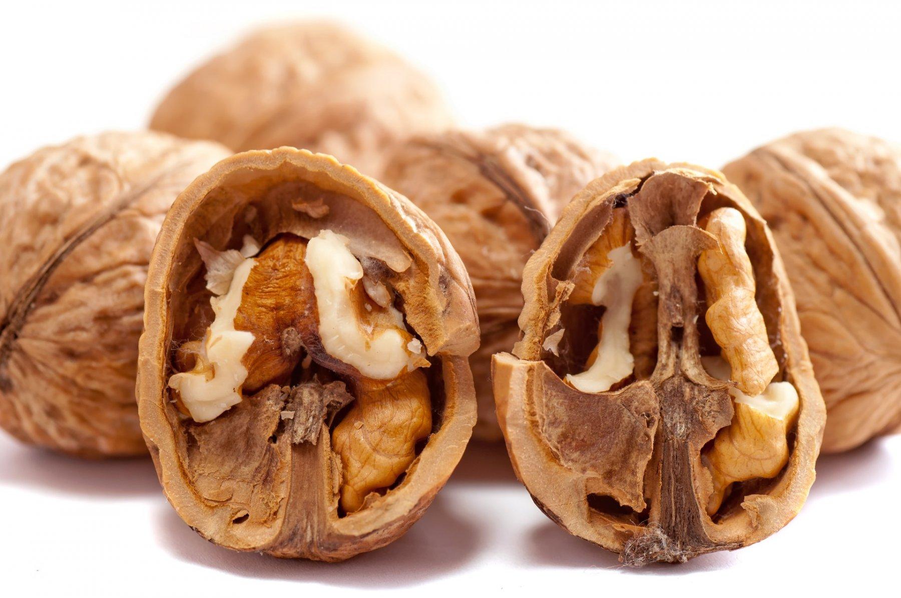 walnuts-2312506_1920